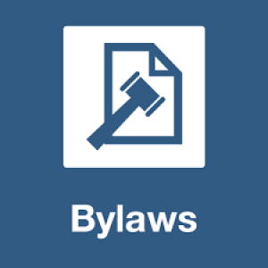 Corporate-Bylaws-300x300.png